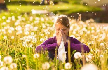 alergias-en-verano