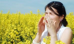 Alergia-primaveral1